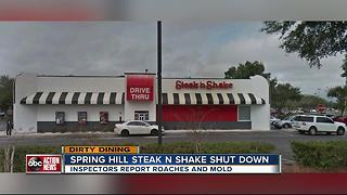 Dirty Dining: Steak 'n Shake shut down for a day after live roaches were seen crawling near food - Video