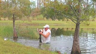 Man heroically saves puppy that was dragged into pond by alligator
