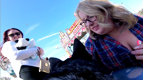 Siberian Husky visits Carnival - GoPro View from his Back