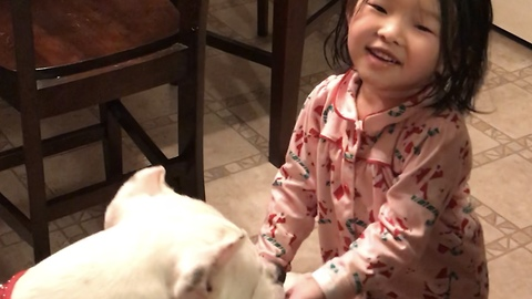 Little girl demonstrates tricks to confused dog