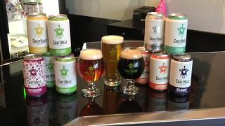 Progress made for Nevada craft breweries thanks to new law expanding production - Video
