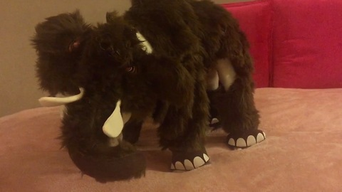French Bulldog shows off epic mammoth Halloween costume