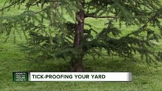 Tick-proofing your yard - Video
