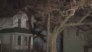 Dead trees lining Cleveland city streets pose a safety hazard — but residents can't cut them down - Video