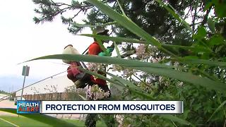 Protection from mosquitoes - Video