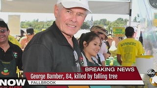 Beloved Avocado Farmer Killed By Fallen Tree - Video