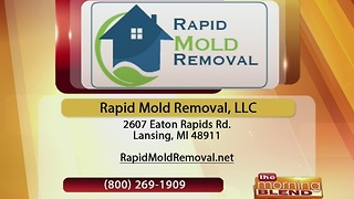 Rapid Mold Removal - 1/6/17 - Video