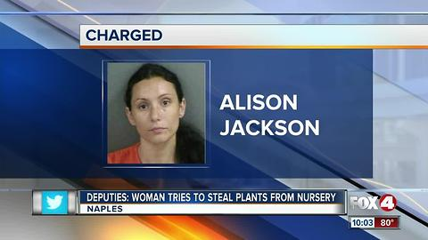 Woman tries to steal plants from nursery