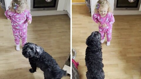 Toddler enjoys teaching her dog new tricks