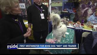 Boise dog trainers go to Westminster - Video