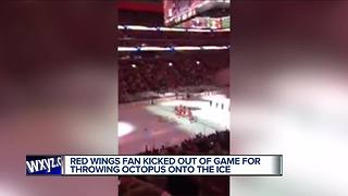 Man kicked out of LCA for throwing octopus - Video