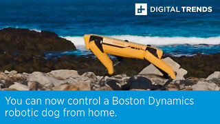 You can now control a Boston Dynamics robotic dog from home.