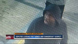 Polk deputies search for 'armed and dangerous' felon following armed robbery in Lakeland - Video