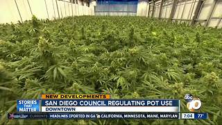 San Diego Council regulating pot use - Video
