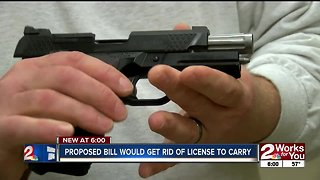 Proposed bill wouldn't require license to carry