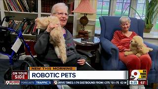 Robotic pets help keep retirement home residents company - Video