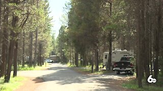 Increase in Camping Takes Toll on Forests