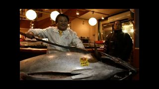 $1.7 Million Tuna - Video