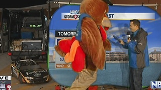 TurkeyTuesday Weather - Video