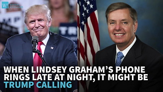 When Lindsey Graham's Phone Rings Late At Night, It Might Be Trump Calling - Video