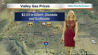 Find the best gas prices in your neighborhood - Video