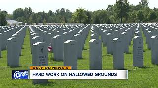 'My friends are buried here': Arborists, veterans spruce up national cemetery