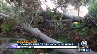 Downed tree traps woman in home - Video
