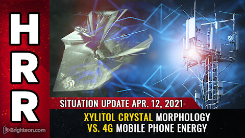 Situation Update - 04/12/2021 - Xylitol crystal morphology vs. 4G mobile phone energy