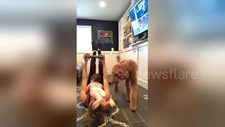 Hilarious moment toddler and dog interrupt mother's workout