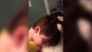 Weird Cat Cleans Kids Hair - Video