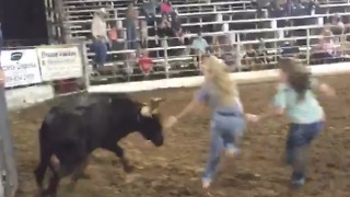 Bull vs. Group of People | What Could Possibly Go Wrong? - Video