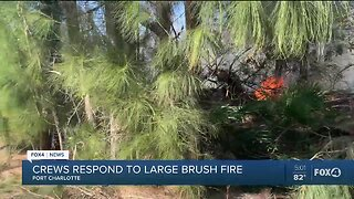 Port Charlotte Brush Fire Threatens Homes