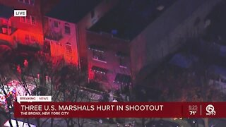 Multiple U.S. Marshals injured in shootout with suspect in New York