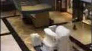 Pennsylvania's King of Prussia Mall Flooded Following Heavy Storm - Video