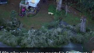 Tree falls on home during storm in Citrus County - Video