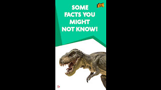 Top 4 Facts About Dinosaurs *