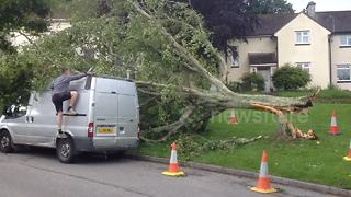 Tree fallen onto van in Cornwall - Video