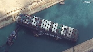 Patriots Stop DS in Suez Canal, AZ Begins Audit on 22nd, Major Pedos Arrested