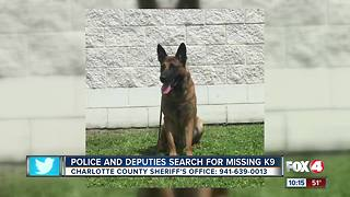 Police and Deputies Search for Missing K9 - Video