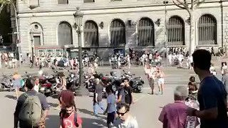 People Rush Down Barcelona Street After Van Crashes Into Pedestrians - Video