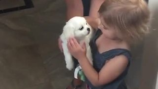 Girls Begged Mom For Puppy, When They Finally Get It, One Of Them Can't Hold Back The Tears - Video