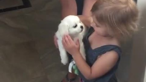 Girls Begged Mom For Puppy, When They Finally Get It, One Of Them Can't Hold Back The Tears
