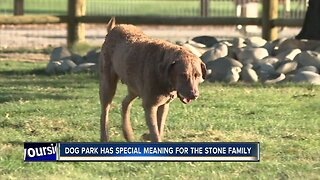 Together Treasure Valley Dog Park popularity