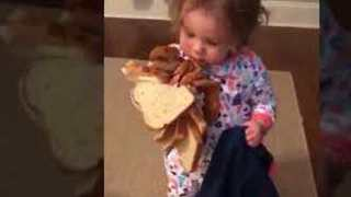 Mischievous Toddler Steals An Entire Loaf Of Bread - Video