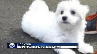 Canton police warning about puppy scam