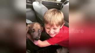 Adorable four-year-old has heartwarming reaction to new puppy - Video