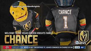 People react to Vegas Golden Knights mascot - Video