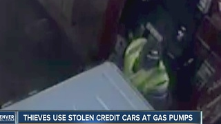 Reward offered in stolen credit card, fuel theft - Video