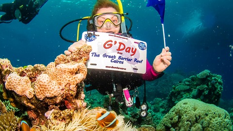 Divers find some amazing creatures on The Great Barrier Reef