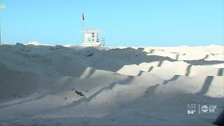 County leaders considering reopening some Pinellas County beaches